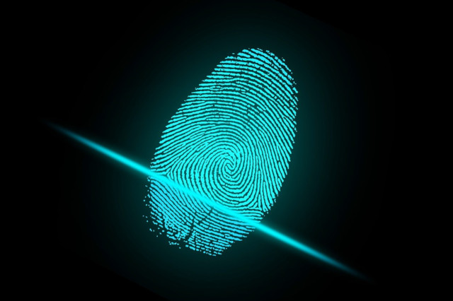 dark green fingerprint