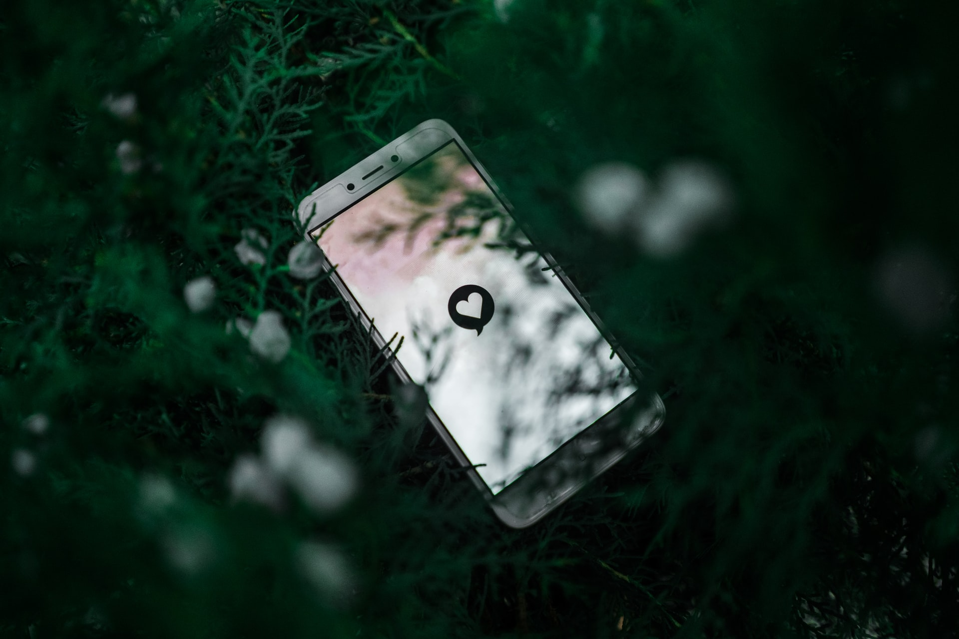 Cell phone in the bushes with an online dating app on the screen